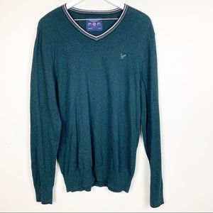 American Eagle | Athletic Fit V Neck Sweater